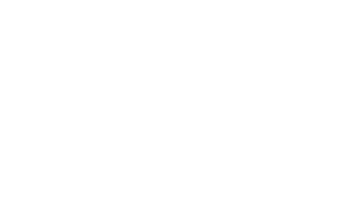 Ritz-Carlton North Hills, Long Island